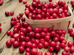 a brief history of cranberries smart news smithsonian