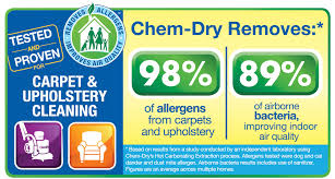 upholstery cleaning s chem