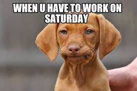 Funny Weekend Meme - lovely working on saturday meme 10 funny saturday memes that capture