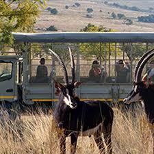ulysses tours u0026 safaris day tours overnight tours u0026 safaris