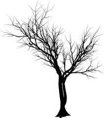 extremely enchanting tree designs especially for you