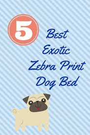 affenpinscher webster s 23 best pet beds images on pinterest pet beds zebras and sofas