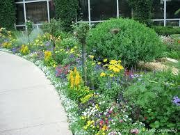 plants for small garden borders u2013 exhort me