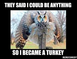 2014 thanksgiving turkey memes 11