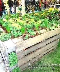 Wood Pallet Garden Ideas Wood Pallet Vegetable Garden World S Best 111 Pallet