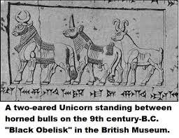 historical evidence for unicorns