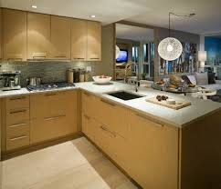 Popular Kitchen Cabinets by Kitchen Trends In Kitchen Cabinets 2016 Latest 2017 Also 2018