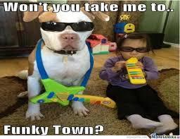 Funk Meme - funky town by milkymoo meme center