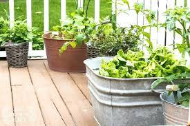 easy container gardening u2013 exhort me