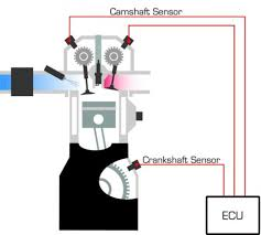 crankshaft camshaft sensors are required by distributorless ignition