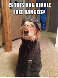 Hipster Dog Meme - hipster dog meme free range kibbles michael bradley time traveler