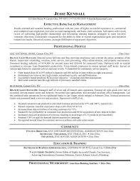 good sales resumes 100 paper for resume 9 11 memorial u0026