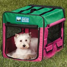 australian shepherd ksl collapsible soft sided crate akc shop