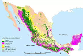 map of mexuco is there any jungles in jalisco mexico quora