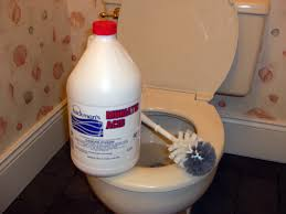 muriatic acid is best for removing stubborn toilet bowl stains