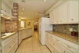 st cecilia granite with dark cabinets u2014 modern home interiors