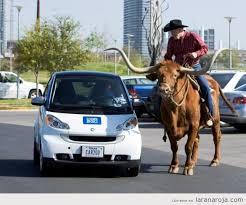 Meanwhile In Texas Meme - meanwhile in texas football guff
