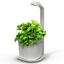 Countertop Herb Garden by Hydroponics Herb Garden Kitchen Picgit Com