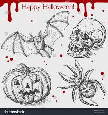 halloween skull pumpkin background vector linear illustration flying bat pumpkinspider stock vector