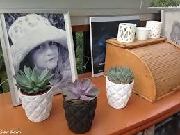 decoration avec des pots en terre cuite brut de déco 1 mes succulentes slow down