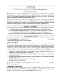 Executive Resume Templates Word Click Here To Download This Vice President Of Operations Resume
