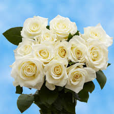 white roses for sale white roses white bouquets for sale global