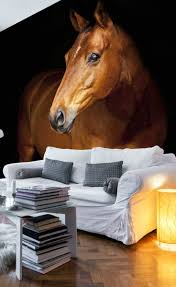 17 best equestrian and horse wallpaper images on pinterest horse