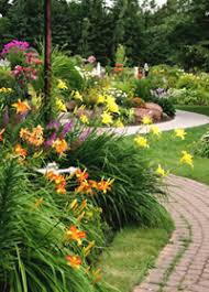 butterfly garden articles on creating butterfly gardens plans