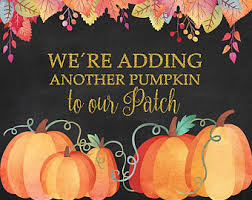 pumpkin patch maternity pumpkin pregnancy etsy