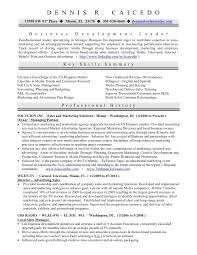 Sample Resume Business Owner by 28 Sample Resume Business Owner The Awesome Small Business