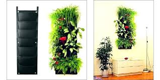 planters that hang on the wall planters online hanging wall planter wall hanging planter online
