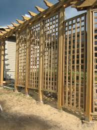 Privacy Trellis Ideas by Brilliant Design Pergola Trellis Winning Pergola With Privacy