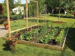 Garden Layouts For Vegetables Backyard Garden Ideas Vegetables Webzine Co