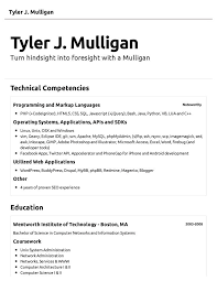 best example of a resume efficiencyexperts us