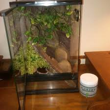find more reptile terrarium tank comes with rocks plants water