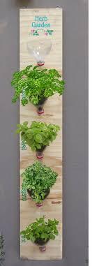 indoor herb garden wall amazing diy indoor herbs garden ideas