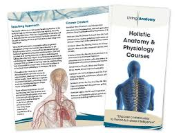 Human Anatomy And Physiology Notes Living Anatomy Brochure U0026 Notes Cover