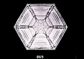 snowflake wilson bentley file bentley snowflake 869 jpg wikimedia commons