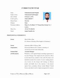latest resume format for accounts manager job in bangalore electronic city resume format for hotel job elegant sles a resume sle