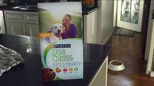 purina light and healthy purina dog chow light healthy tv spot ispot tv