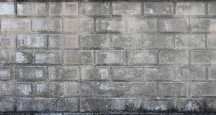 Cinder Block Decorating Ideas by Concrete Block Wall Related Keywords Suggestions Keyword Images