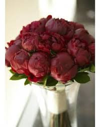 Peonies Delivery Peonies Delivery And Order Flowers Price From 16650tg In Astana
