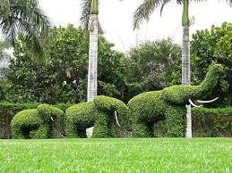landscape what is a landscape architect landscape architect