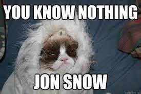 Grumpy Cat Snow Meme - grumpy cat edition you know nothing jon snow know your meme