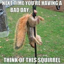 Bad Day At Work Meme - a good bad day greg bray writer