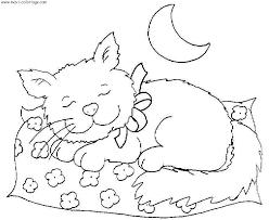 coloriages chats le blog tigresse