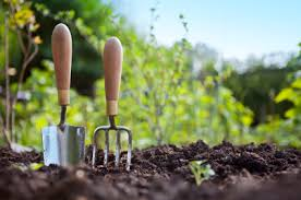 planting a vegetable gardening decorating clear