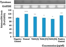 si鑒e de pellet inhibitory effects of taraxacum mongolicum with phreatic water on