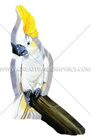 cartoon cockatiel cockatoo production ready artwork for t shirt printing