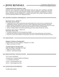 Health Care Resume Sample by Good Looking Compassionate Hospice Care Nursing Resume Sample With